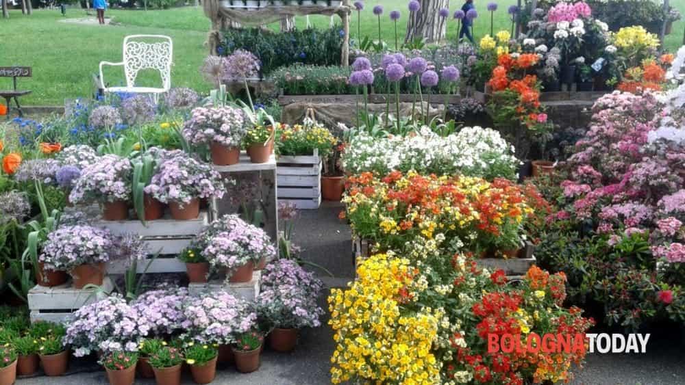 I 12 eventi top del weekend - Giardini e fiori ...