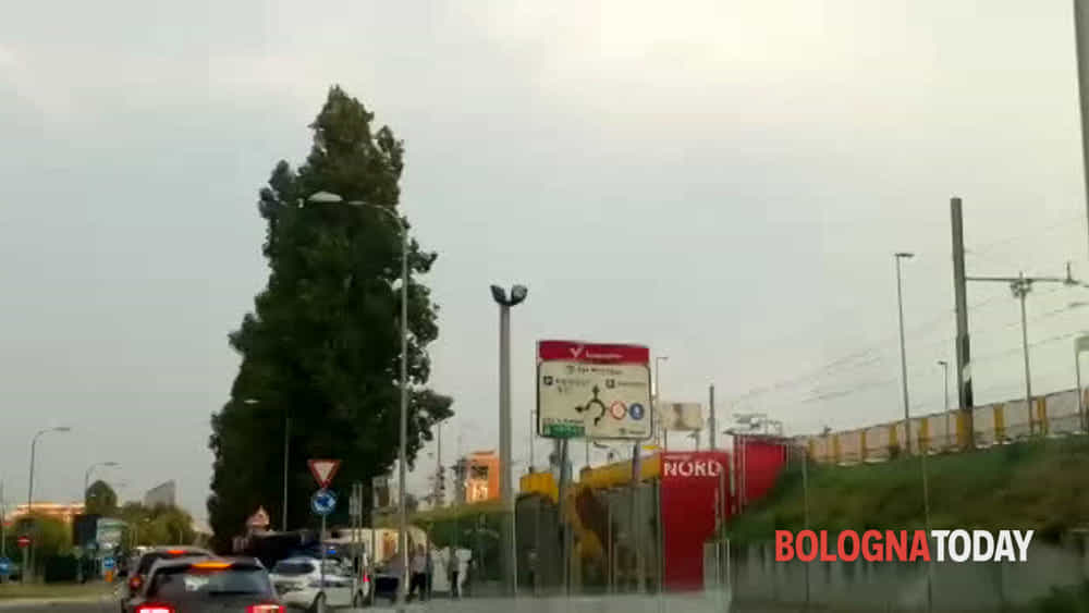 VIDEO, Camion