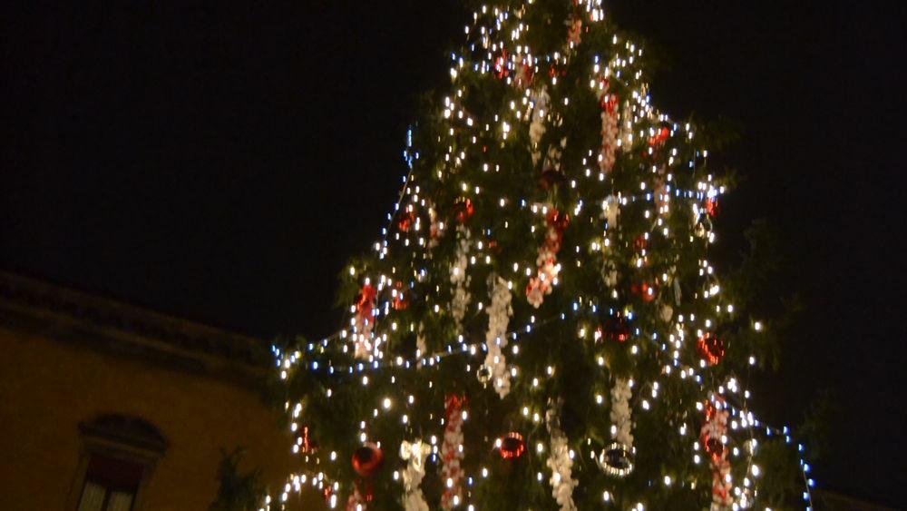 Albero Di Natale 8 Dicembre.Albero Di Natale Sabato L Accensione In Piazza Nettuno